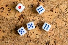 Os ossos brancos jogados na tabela com uma cortiça marrom terminam Fotografia de Stock Royalty Free