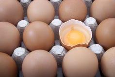 Os ovos abrem Imagens de Stock