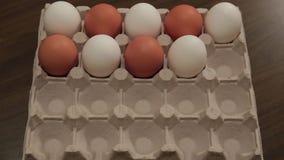 Os ovos brancos na pilha da caixa transformam um por um em ovos marrons animation video estoque