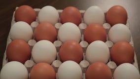 Os ovos brancos na pilha da caixa transformam um por um em ovos marrons animation filme