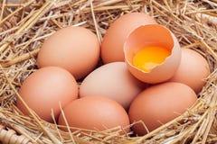 Os ovos colocados com feno Fotografia de Stock Royalty Free