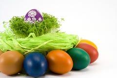 Os ovos coloridos com agrião Imagem de Stock Royalty Free