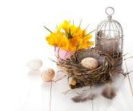 Os ovos da páscoa aninham-se com birdcage e açafrão amarelo da mola Foto de Stock Royalty Free
