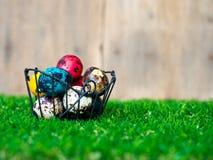 Os ovos da páscoa coloridos estão na cesta Colocado na grama verde Tenha um coelho bonito na parte traseira A parte traseira é um Foto de Stock