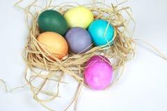 Os ovos da páscoa coloridos na ráfia aninham-se no fundo branco Fotografia de Stock