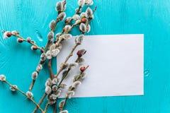 Os ovos da páscoa pasteis coloridos na bacia com papel vazio etiquetam para o tex Foto de Stock