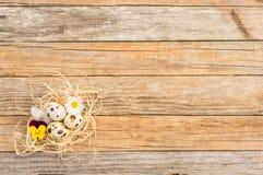 Os ovos da páscoa pequenos aninham-se com palha e flores na tabela de madeira rústica, vista superior, espaço da cópia Foto de Stock