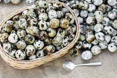 Os ovos de codorniz muitos dentro cesta e montão descascam ovos de codorniz no sackc Imagens de Stock Royalty Free