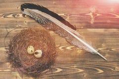 Os ovos de codorniz no ninho com escrita emplumam-se, easter Foto de Stock