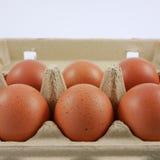 Os ovos de galinha frescos Fotografia de Stock Royalty Free