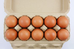 Os ovos de galinha frescos Fotografia de Stock