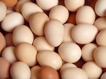 Os ovos dirigem, fundo Imagem de Stock Royalty Free