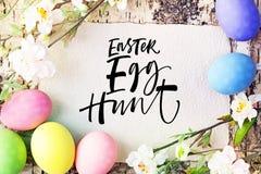os ovos do comedor caçam o texto não editável ovos da páscoa coloridos com a flor branca no fundo de madeira imagens de stock royalty free