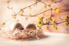 Os ovos dourados em uma palha aninham-se no sol da manhã Fotos de Stock Royalty Free
