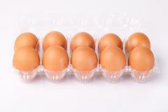 Os ovos embalados isolaram o fundo branco Fotografia de Stock Royalty Free