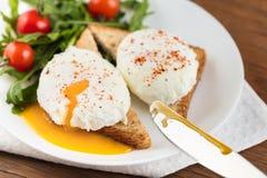 Os ovos escalfados Foto de Stock