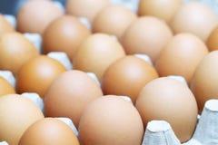 Os ovos estão nas caixas de papel, prontas para fazer o café da manhã fotografia de stock