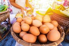 Os ovos na bandeja e no cozinheiro chefe fazem o alimento Imagem de Stock