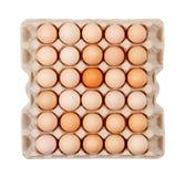 Os ovos na caixa encaixotam a colocação isolada na opinião superior do fundo branco Foto de Stock