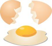 Os ovos rachados abrem Foto de Stock Royalty Free