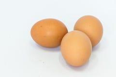 Os ovos são isolados Imagem de Stock Royalty Free