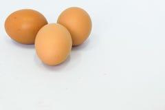 Os ovos são isolados Foto de Stock Royalty Free