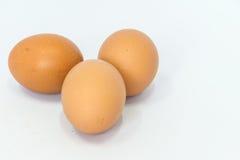 Os ovos são isolados Fotografia de Stock Royalty Free