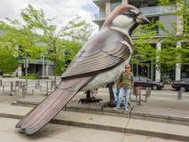 Os pássaros Fotos de Stock Royalty Free