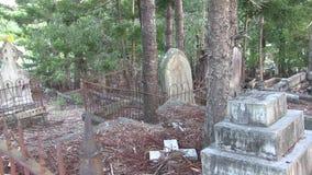 Os pássaros cantam no cemitério dilapidado filme