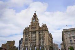 Os pássaros do fígado na construção do fígado em Liverpool Inglaterra Foto de Stock Royalty Free