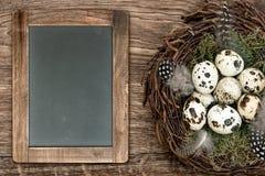 Os pássaros eggs no ninho, fundo de madeira, quadro-negro Fotos de Stock Royalty Free