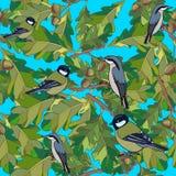 Os pássaros pequenos cantam canções. Textura sem emenda. Fotografia de Stock