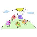 Os pássaros pequenos coloridos vão no monte no sol Foto de Stock