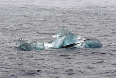 Os pássaros sobre a geleira pequena congelam em Spitsbergen, Noruega Imagem de Stock Royalty Free