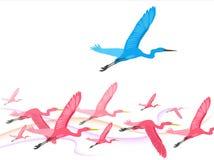 Os pássaros voam sobre Imagens de Stock