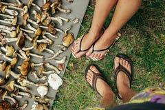 Os pés à moda felizes dos pares que estão em muitos recolheram os cogumelos, l imagens de stock