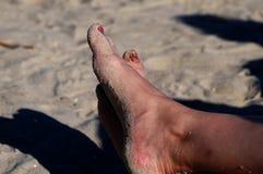 Os pés Fotografia de Stock Royalty Free