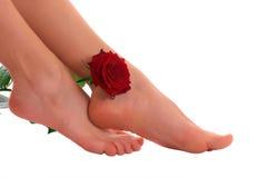 Os pés da mulher com levantaram-se Imagem de Stock Royalty Free