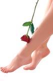 Os pés da mulher com levantaram-se Foto de Stock