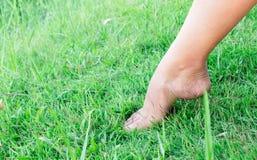 Os pés da mulher relaxam o sentimento no fundo da grama verde com luz de Fotos de Stock Royalty Free