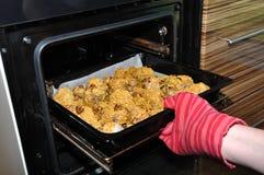 Os pés de galinha Roasted retiram do forno Imagens de Stock Royalty Free