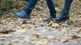 Os pés do homem novo e da mulher estão andando nas folhas de outono filme