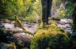 Os pés equipam a posição no log sobre o rio exterior Foto de Stock