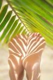 Os pés magros da mulher bonita fotografia de stock royalty free