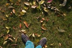 Os pés masculinos nos gumshoes que estão na queda amarela saem no parque do outono Conceito do outono Imagens de Stock