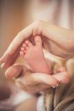 Os pés recém-nascidos nas mãos delicadas da mãe Fotos de Stock