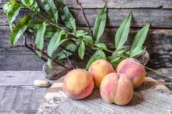 Os pêssegos com um ramo em uma placa de corte cobriram o pano de saco Fotografia de Stock Royalty Free