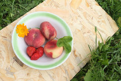 Os pêssegos e a morango maduros que encontram-se em uma placa Foto de Stock