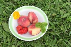 Os pêssegos e a morango maduros que encontram-se em uma placa em uma grama Fotos de Stock Royalty Free
