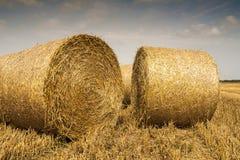 Os pacotes da palha rolaram acima, o restolho da colheita. Fotografia de Stock Royalty Free